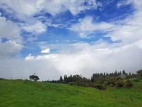 La_Reunion-Westkueste-Weg_zum_Vulkan-1
