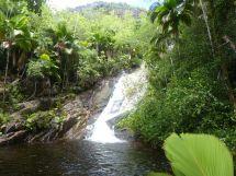 Mahé - Wasserfall an der Sans Soucis Road