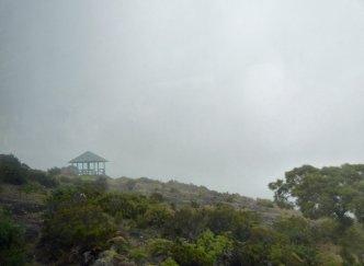 La_Reunion-Weg_zu_Le_Maido-Nebel-5