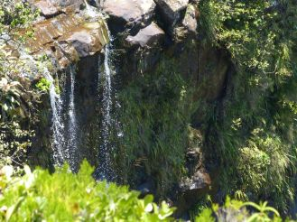 Mauritius-Black_River_Gorges_National_Park-Alexandra_Falls-1