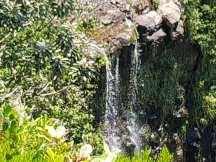 Mauritius-Black_River_Gorges_National_Park-Alexandra_Falls-2