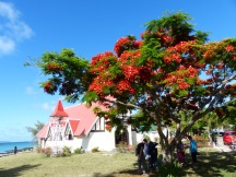Mauritius-Cap_Malheureux-Kirche-Flammbaum-2