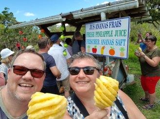 Mauritius-Leckere_Ananas-1