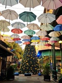 Mauritius-Port_Louis-Caudan_Waterfront-Weihnachtsbaum-8