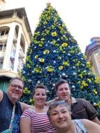 Mauritius-Port_Louis-Caudan_Waterfront-Weihnachtsbaum-wir-1