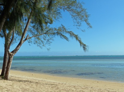 Mauritius-Strand-Bel_Ombre-7