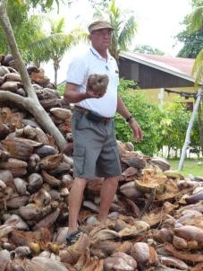 Seychellen-La_Digue-Union_Estate_Farm-Kokosnuss-1