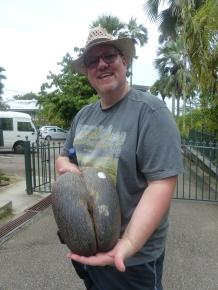 Seychellen-Mahe-Botanischer_Garten-Coco_de_Mer-wir-1