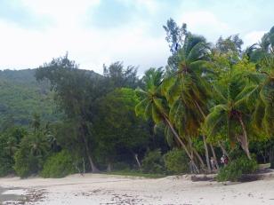 Seychellen-Mahe-Strand_Takamaka-5
