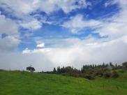La_Reunion-Landesinnere-2
