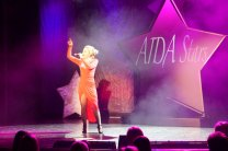 AIDA-Stars-Theater-1