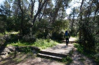 Split-Marjan-Wald-Wanderweg-1
