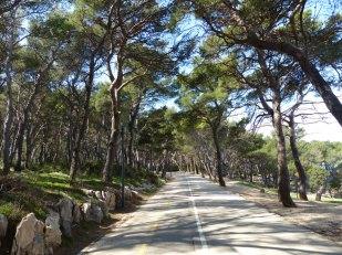 Split-Marjan-Wald-Wanderweg-2