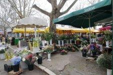 Split-Markt-Blumen-1
