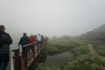 Norwegen-Trollstigen-Rundweg-Nebel-2