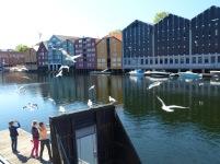 Trondheim-Nidelva-Bakklandet-Speicherhaeuser-9