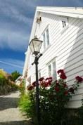Norwegen-Stavanger-Gamle_Stavanger-Altstadt-weisse_Holzhaeuser-Blumen-5
