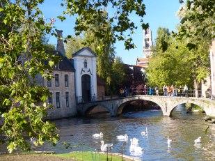Bruegge-Altstadt-Kanal-Schwaene-2