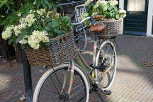 Rotterdam-Einkaufstrasse-Binnenweg-Fahrrad-2