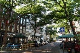 Rotterdam-Kneipenviertel-Witte_de_Whitstraat-1