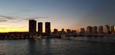 Rotterdam-Skyline-bei_Nacht-1