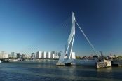 Rotterdam-Skyline-Erasmusbruecke-3