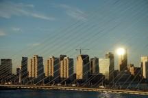 Rotterdam-Skyline-Erasmusbruecke-am_Abend-2